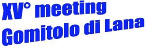 Il Gomitolo di lana, meeting internazionale giovanile, Biella (ITA) @ Il Gomitolo di Lana, XV meeting internazionale giovanile di Biella | Kuldīga | Latvia